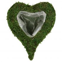Plant heart moss 28cm x 23cm