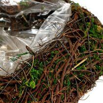 Plant heart vine, moss 22cm x 25cm H7cm