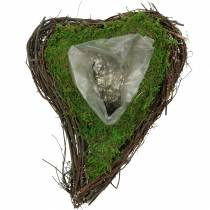 Plant heart vine, moss 26cm x 36m H9cm