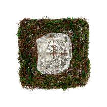 Plant pillow vine, moss 22cm x 22cm H7,5cm