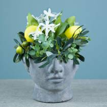 Planting head bust made of concrete for planting gray H12cm 2pcs