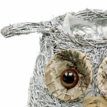 Planting basket owl vine white washed Ø14cm