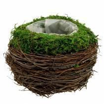 Planting bowl rattan, moss Ø19cm H13cm