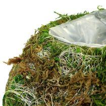 Planting Bowl Moss Bowl Ø18cm 2pcs