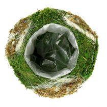 Planting bowl made of moss Ø28cm