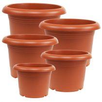 """Plant pot """"Oliver"""" terracotta, Ø15cm - 45cm, 1pce"""