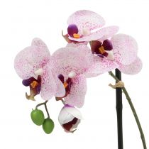 Artificial Phalaenopsis Purple-White in Cup H38cm