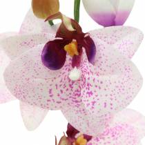 Artificial orchid phaleanopsis white, purple 43cm