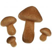 Mushrooms Light Brown Mix 2cm - 8cm 12pcs