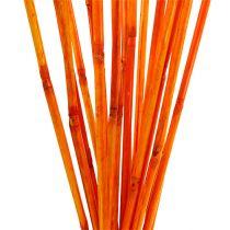 Rattan stems orange 100cm 20pcs.