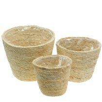 Plant basket rattan natural Ø26/22/16cm 3pcs