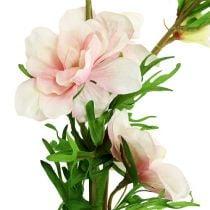 Delphinium light pink L95cm