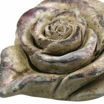 Concrete rose heart gray, violet Ø13 H5cm 3pcs
