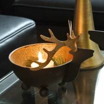 Bowl with reindeer head black, golden metal Ø11 / 14cm set of 2