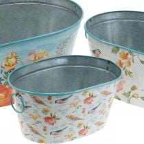 Plant bowls, spring, planter flowers / birds, metal container oval L39 / 31 / 24.5cm set of 3