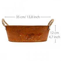 Flower bowl, rust decoration, planter with handles, autumn L35cm H12cm