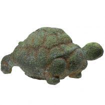 Garden figure turtle mossed 30cm x 18cm H15cm