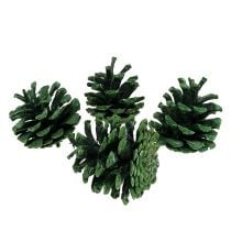 Black pine cones green frosted 5-7cm 1kg
