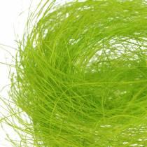 Sisal spring green decorative grass 500g
