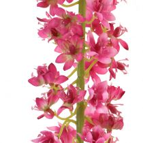 Steppe candle Desert tail Pink 106cm