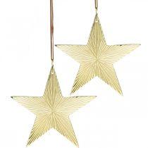 Gold star, Advent decoration, decoration pendant for Christmas 12 × 13cm 2pcs