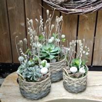 Succulent plant artificial green 27cm