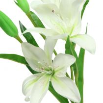 Lily white 58cm