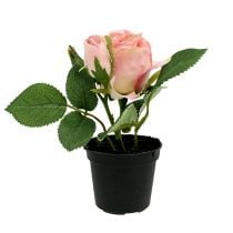 Table decoration Rose in the pot light pink 14cm