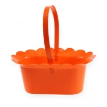 Potted Blossom with handle oval 23cm 10pcs