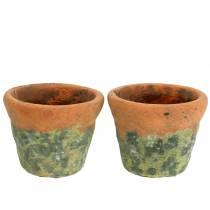 Plant pot planter vintage natural clay Ø14.5cm H12cm 2pcs