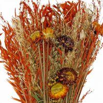 Dried flowers bouquet orange mix 42cm