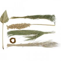Dried flowers exotic white-nature mix, dry flora mix