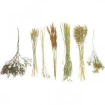 Dried flowers DIY set for drying bouquet nature 60cm