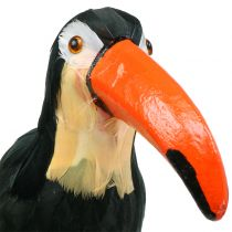 Deco toucan with feathers Black L37cm