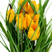 Tulips in a pot yellow 30cm