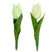 Spring decoration, artificial tulips, silk flowers, decorative tulips green / cream 12pcs