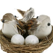 Bird's Nest with Eggs and Birds 6pcs