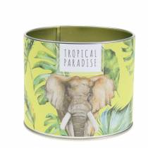 Scented candle in a rainforest can yellow Ø9.5cm H8cm