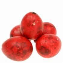 Quail eggs red blown eggs 50p