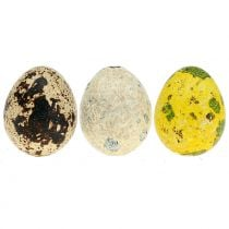 Quail eggs assortment yellow, nature 3cm 72pcs