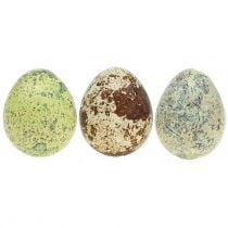 Quail eggs assortment green, natural 3cm 72pcs