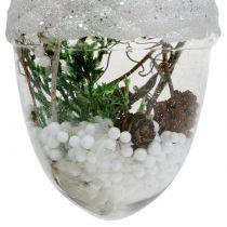 Christmas tree decoration Acorn snow globe Ø8cm 2pcs