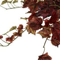 Vine leaves hanging green, Bordeaux 67cm