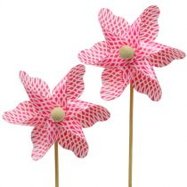 Windmill Mini Red-White Ø9cm 12pcs
