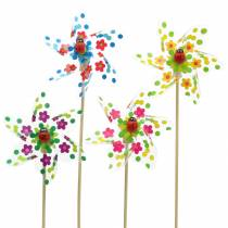 Windmill Mini Multicolored with Ladybird Ø9cm 12pcs