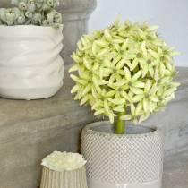 Ornamental onion Allium, silk flower, artificial ball leek green Ø20cm L72cm