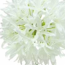 Allium Artificial White Ø12cm H62cm