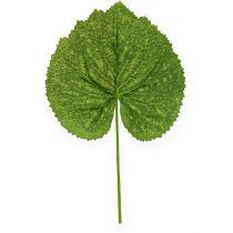Decorative Plant Leaves Galax B10cm L22cm 24pcs