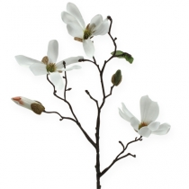 Deco Branch Magnolia 40cm White 4pcs