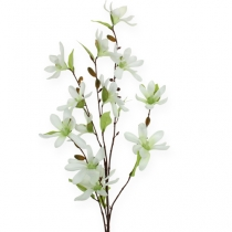 Magnolia branch light green 91cm